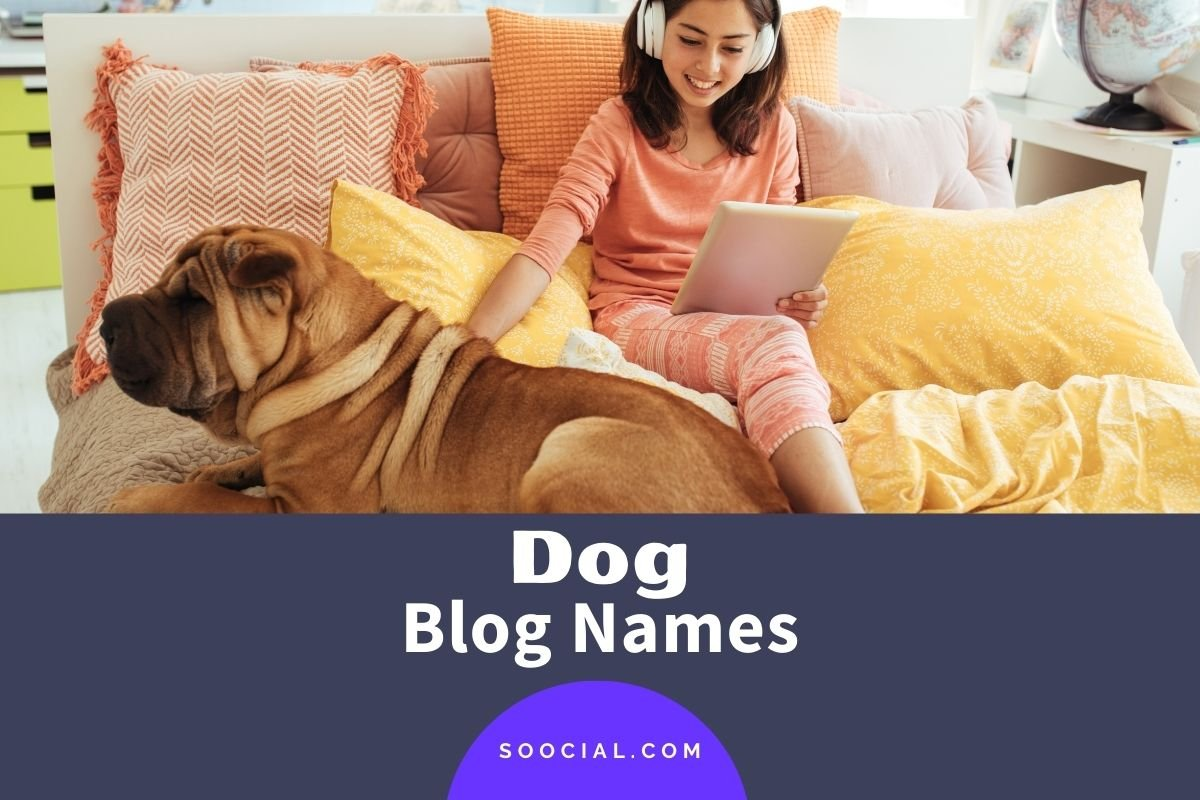 Dog Blog Names