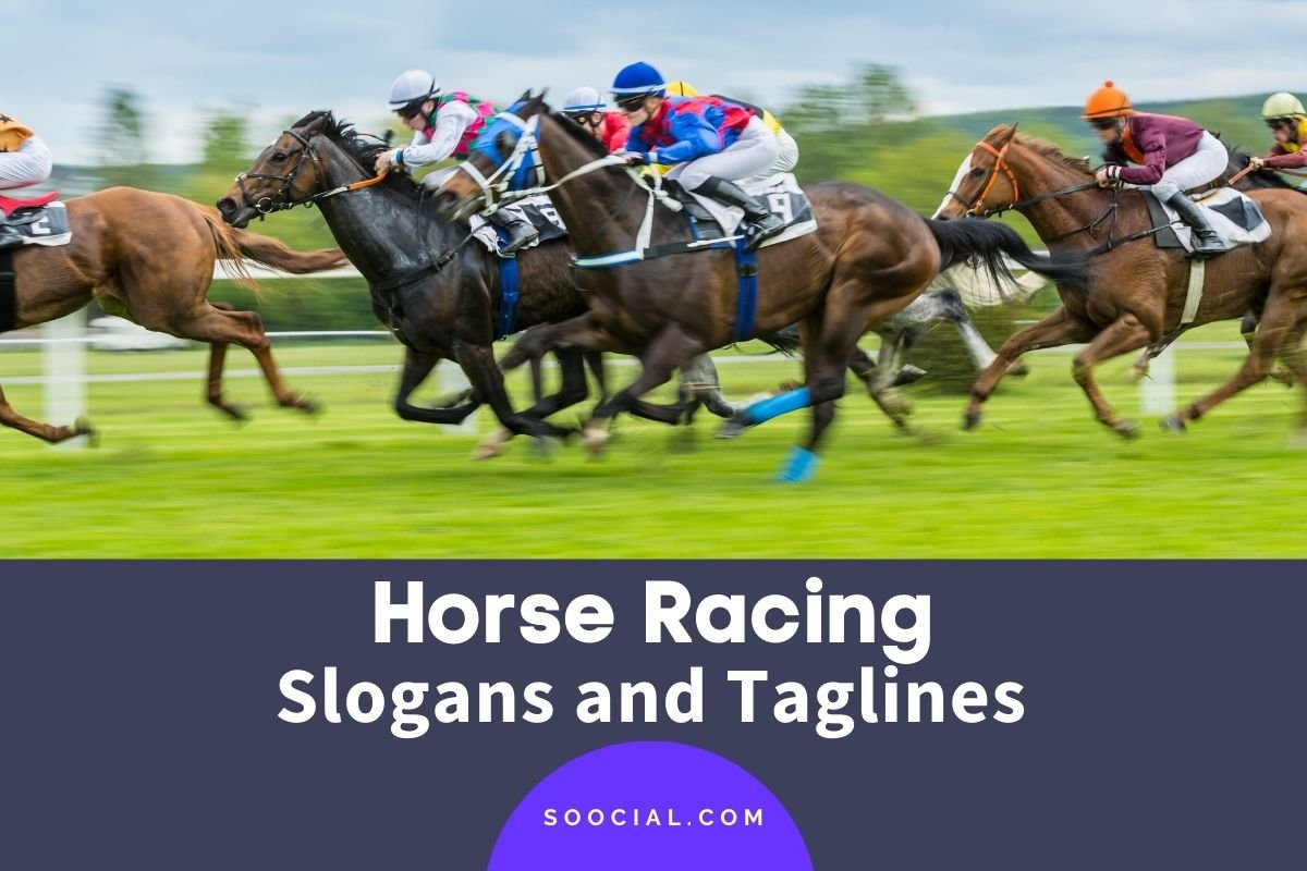 Horse Racing Slogans
