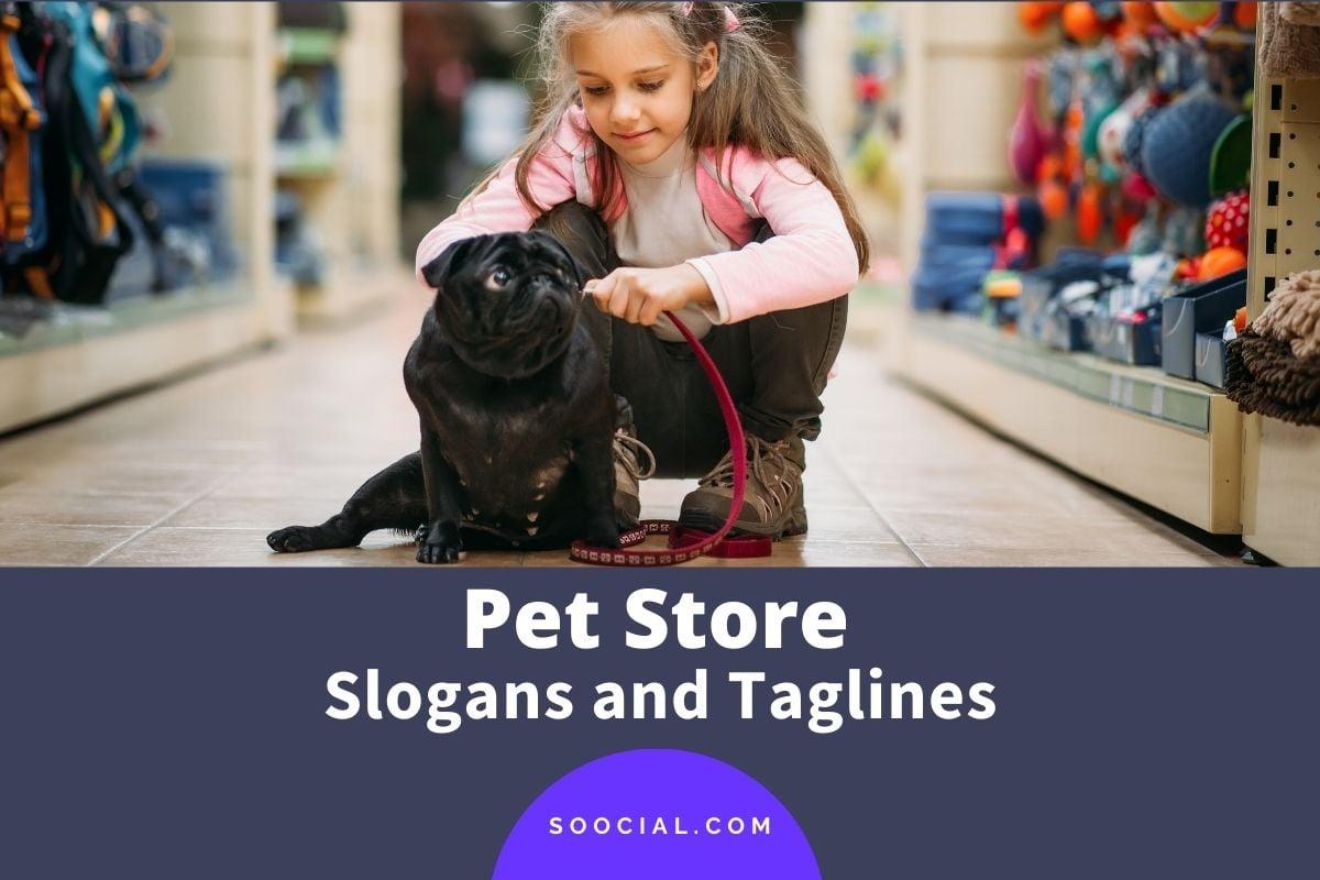 Pet Store Slogans