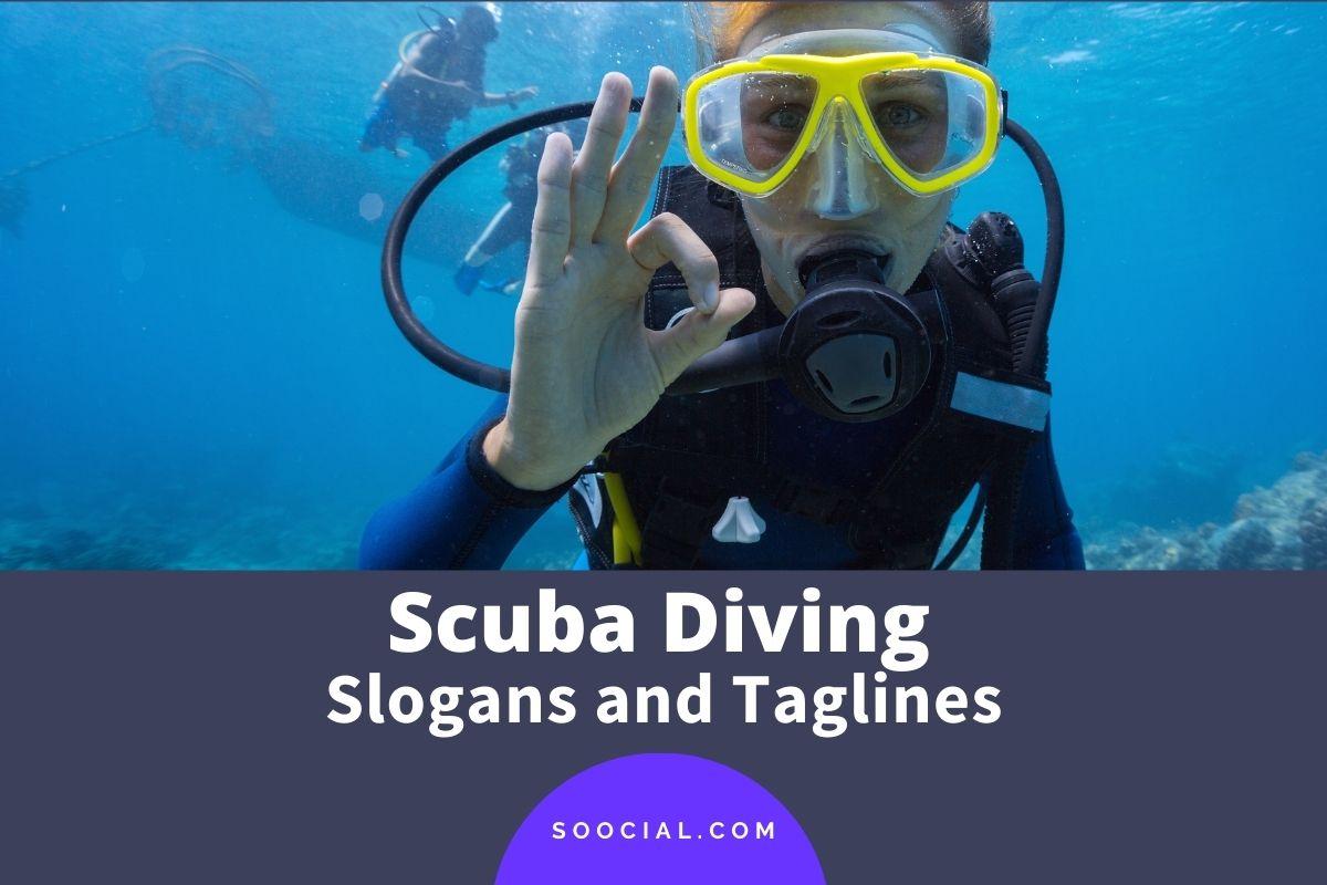 Scuba Diving Slogans