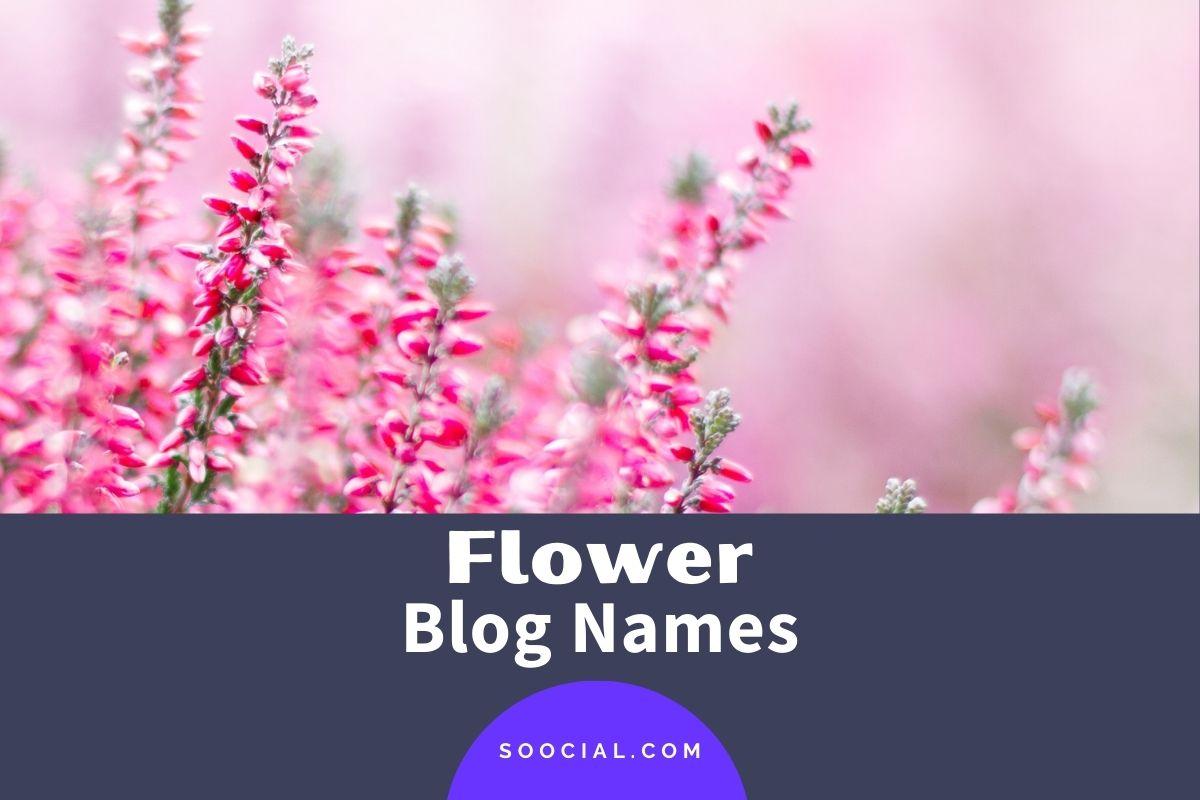 Flower Blog Names