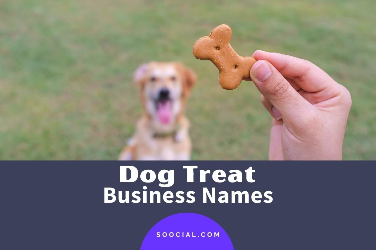 Dog Treat Business Names