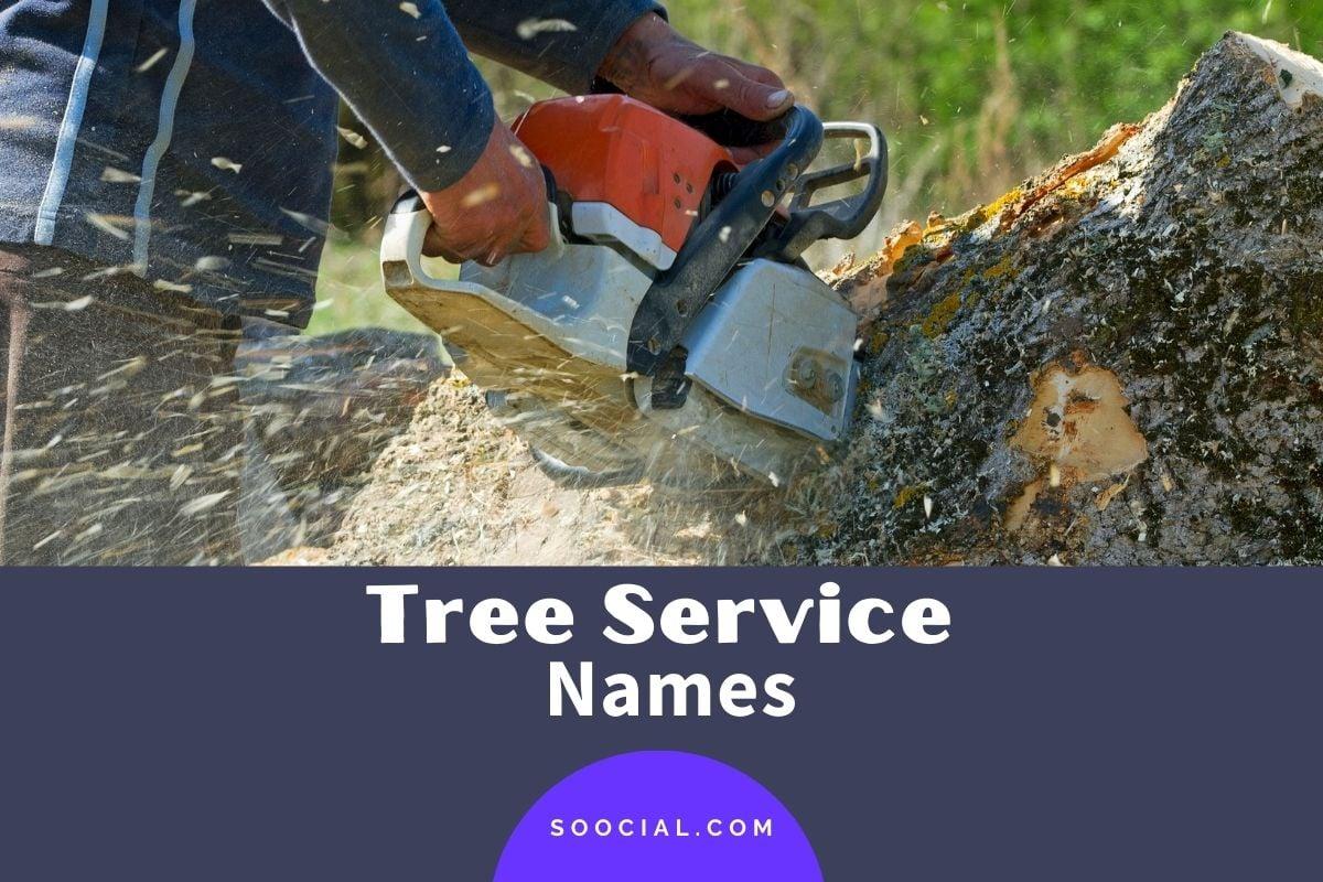 Tree Service Names