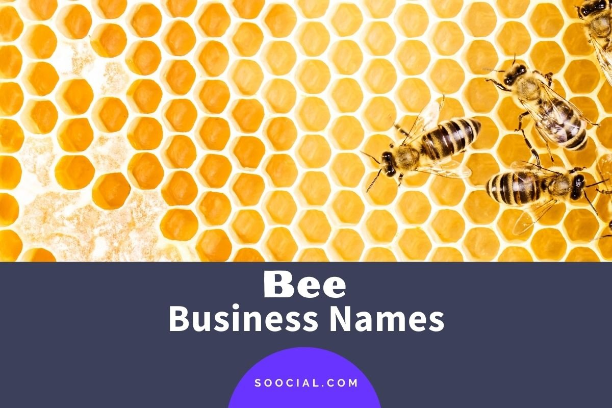 Bee Business Names