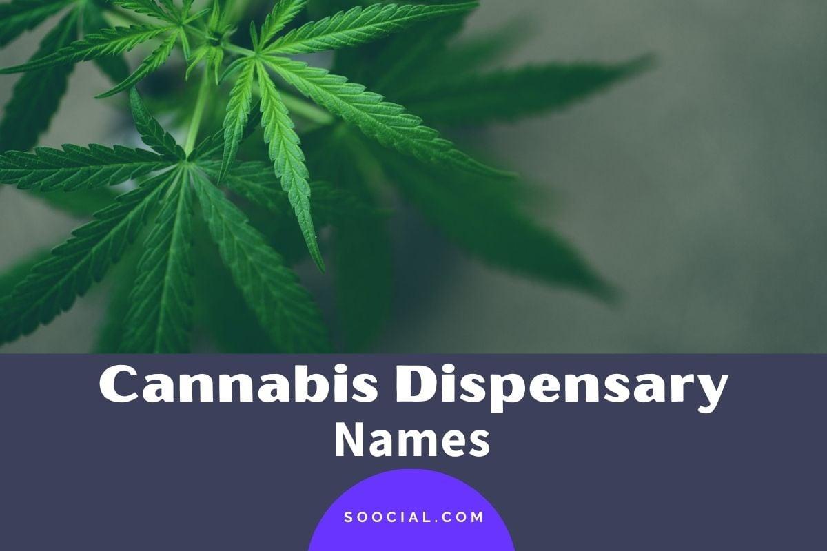 Cannabis Dispensary Names