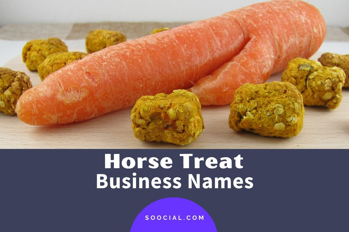 Horse Treat Business Names