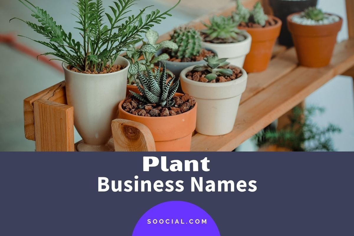 Plant Business Names