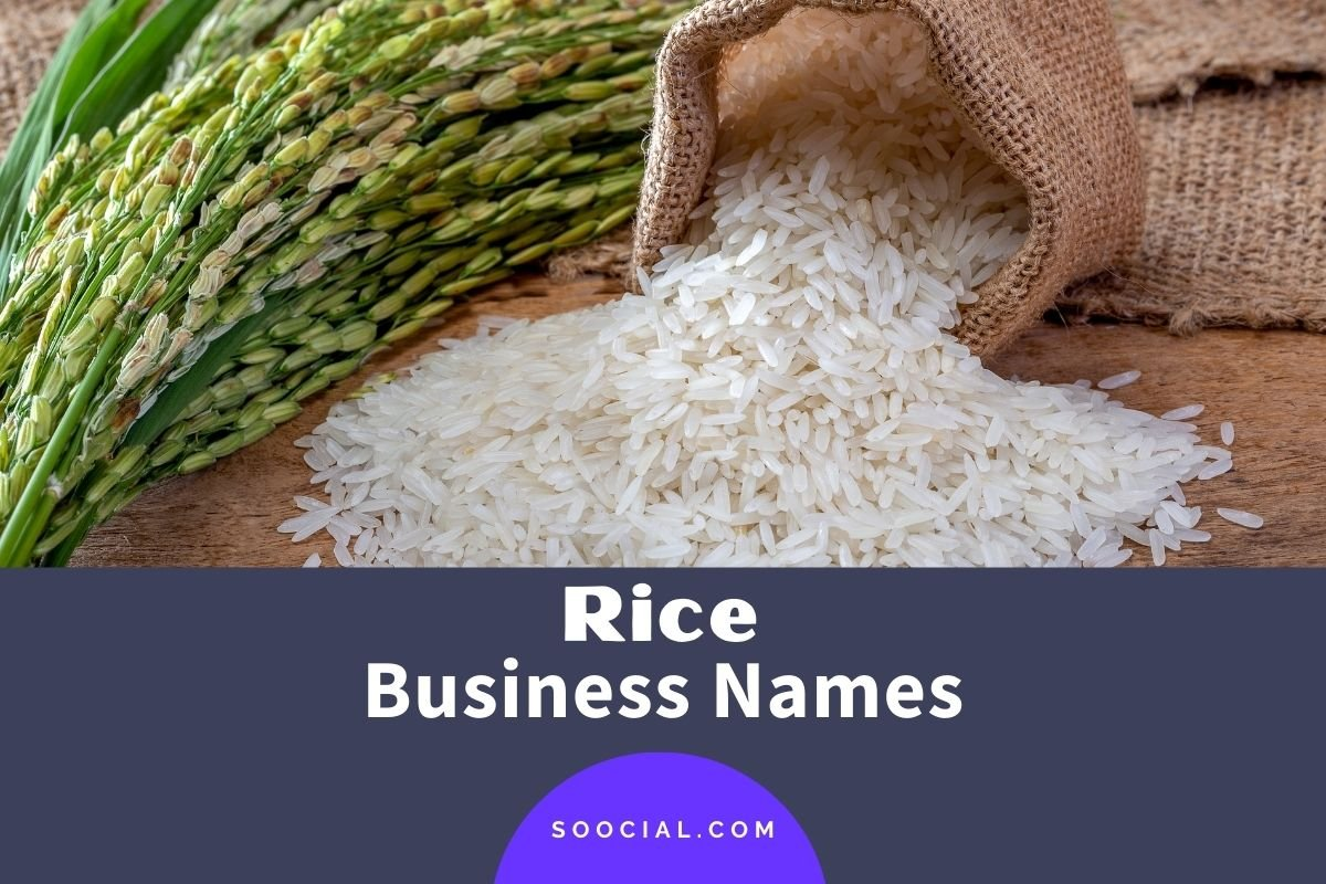 Rice Business Names