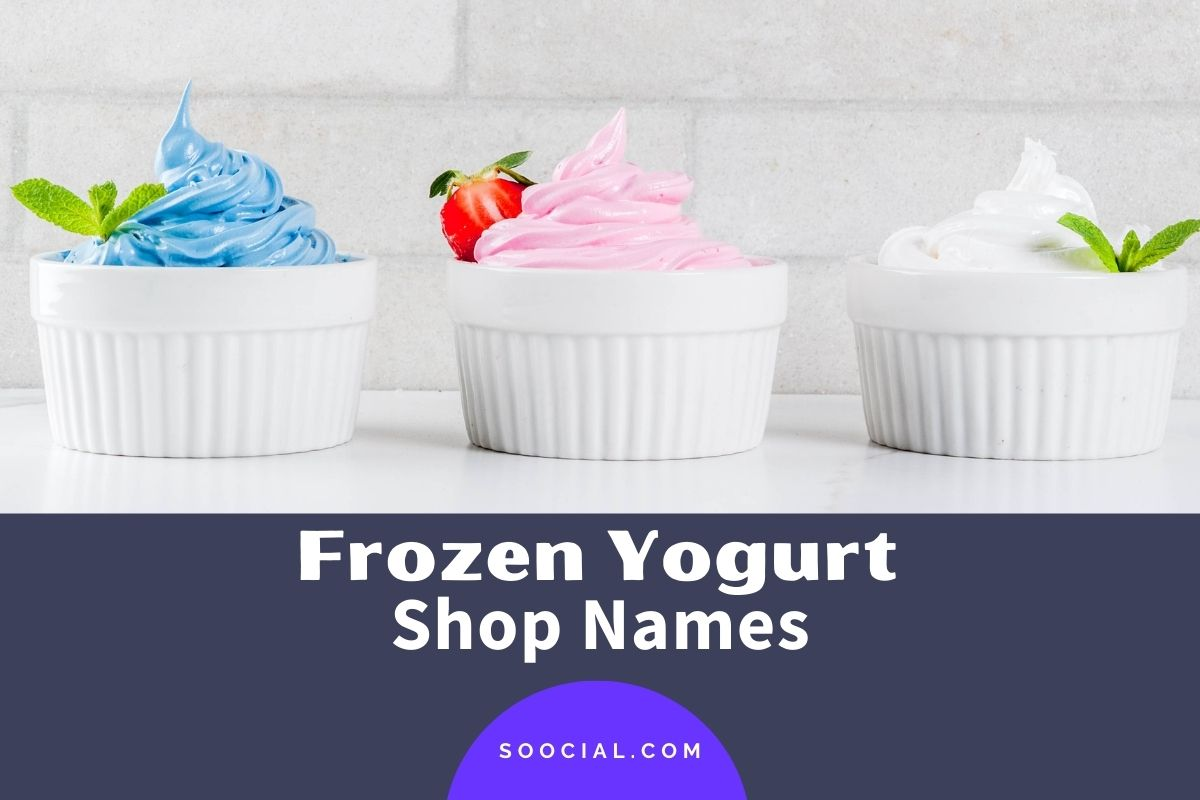 Frozen Yogurt Shop Names