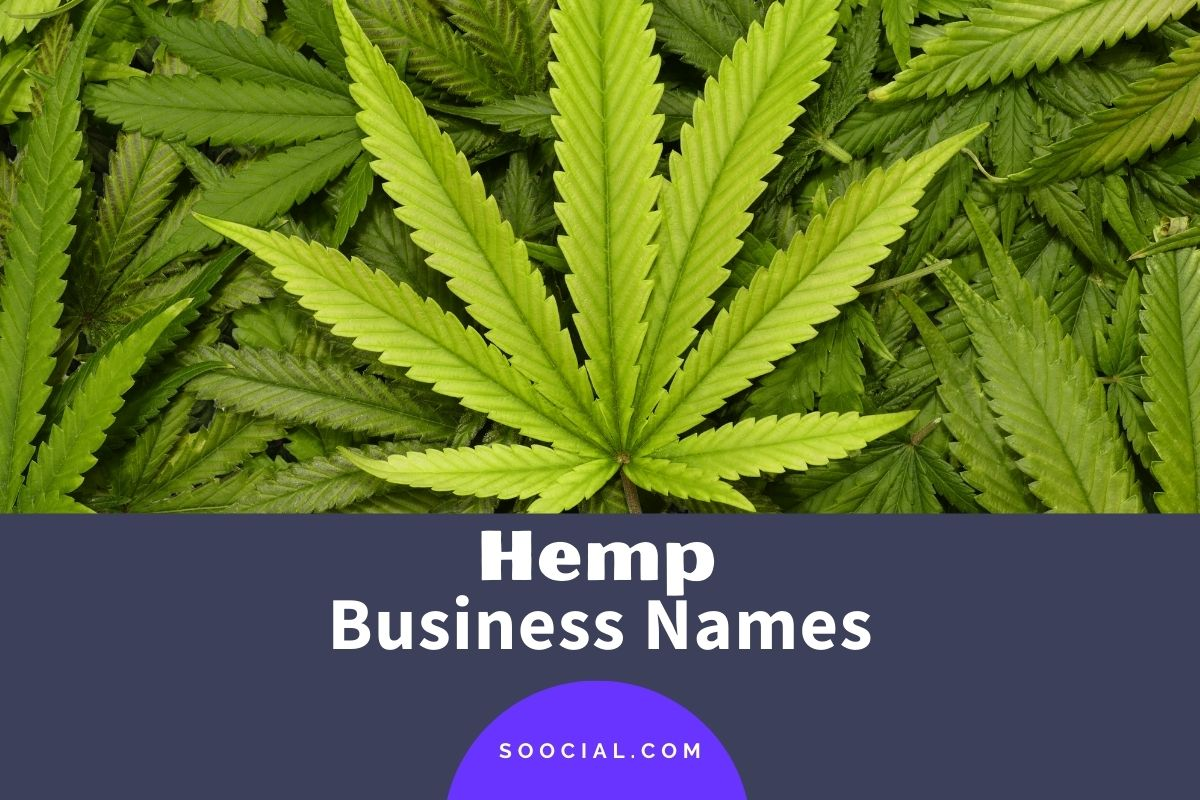 Hemp Business Names
