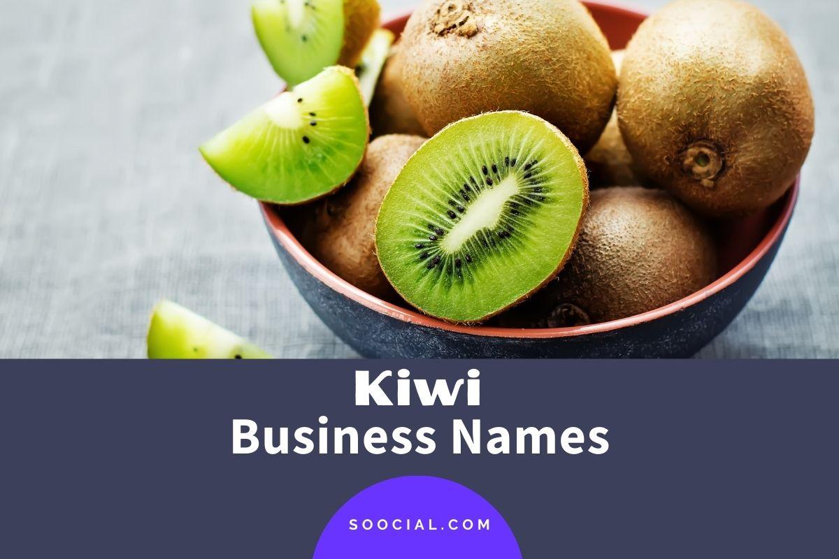 Kiwi Business Names