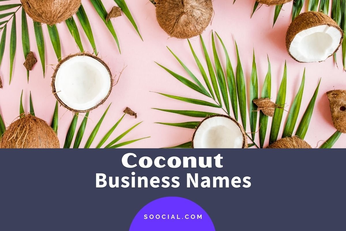 Coconut Business Names