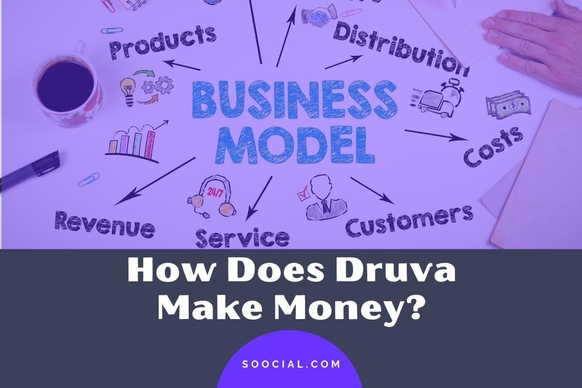 How Does Druva Make Money